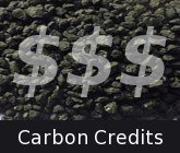 search for carbon credits